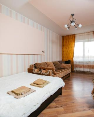 Apartment Gorkogo 20 apt85
