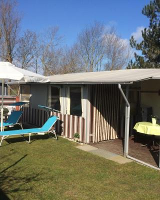 Hundecamping Fehmarn Wulfener Hals