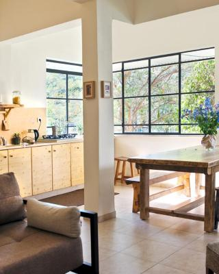 Bedani's Apartment