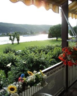 Ferienwohnungen mit Rheinblick