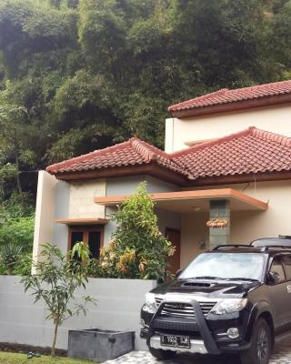 Villa Roemi