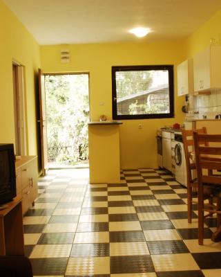 Apartment Popovic