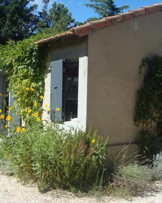 Petite maison et jardin en Provence