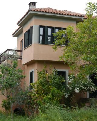 Chorto Garden Home