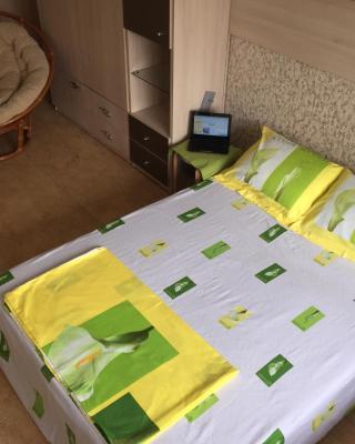 Apartments on Krasny pr.
