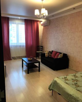 Apartment na Yubileynyy prospekt 66d