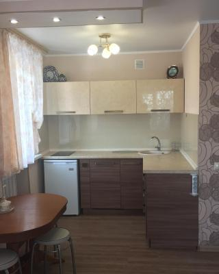 Studio apartment on prospekt 50 let Oktyabrya