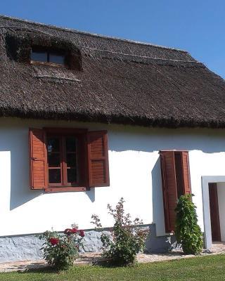 Country house Balaton