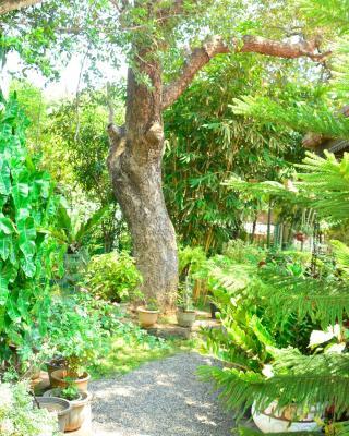 Livinginn Polonnaruwa