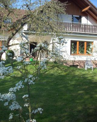 Ferienwohnung Lahntal/Taunus