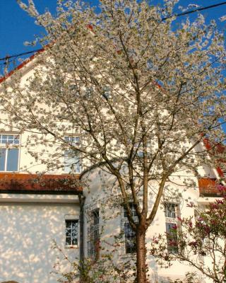 Villa Lorali