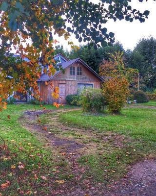 Casa Cunco Hostel