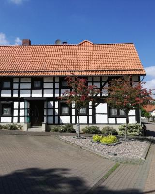 Vakantiehuis Gittelde, Harz