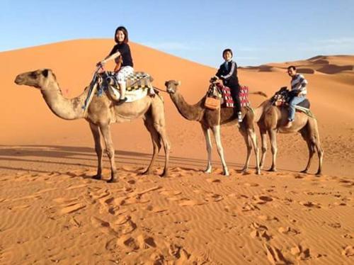 Enjoy Sahara Camp