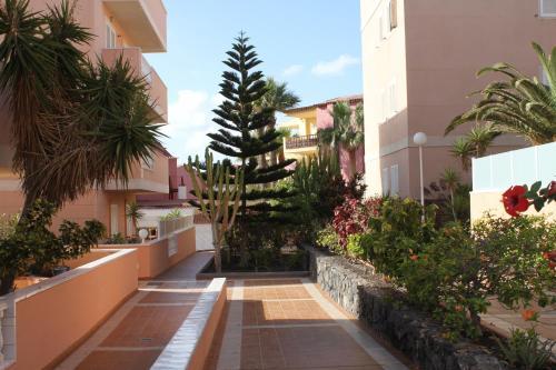 Costasol Complex Apartment