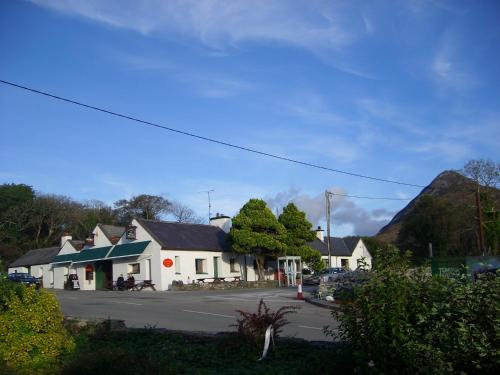 Cloverfox Connemara
