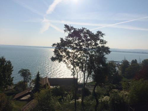 The 10 Best Pet-friendly Hotels in Tihany, Hungary | Booking com