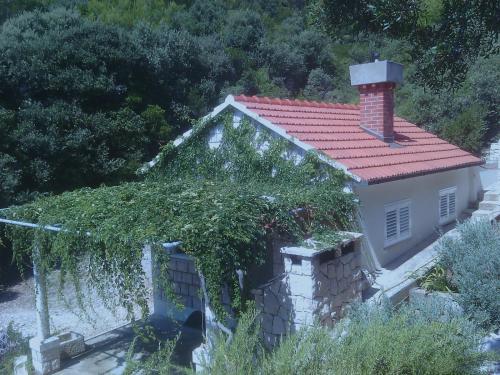 House Rasohatica Tare