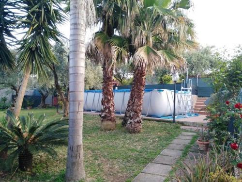 Villa Mandarino