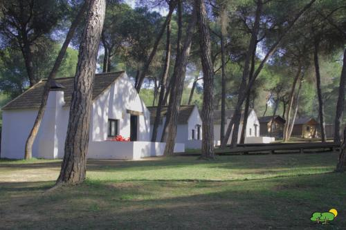 Description for a11y. Camping Dehesa Nueva