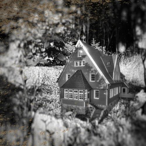 Villa Brockenhexe