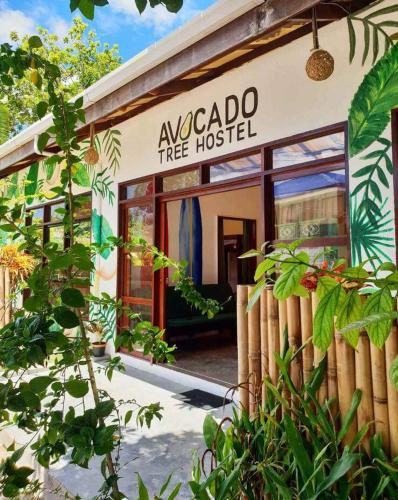 Avocado Tree Hostel