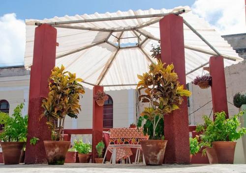 The 10 Best Pet-Friendly Hotels in Camagüey, Cuba   Booking com