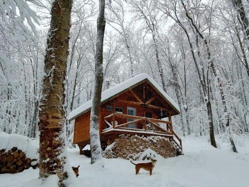 Les cabines Nordik des piles