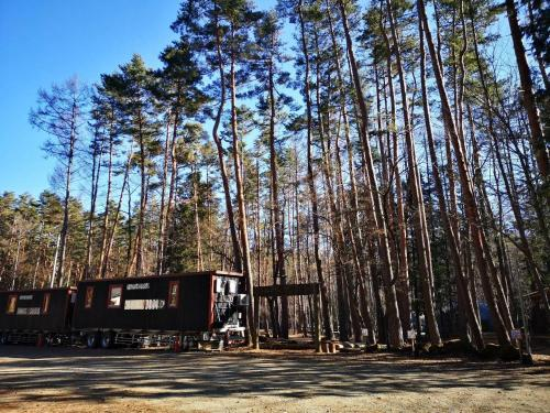 Qooneltas Container House In The Forest