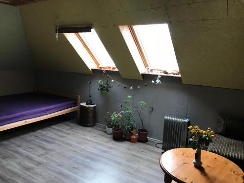 VainodesStr. Rooms&Sauna