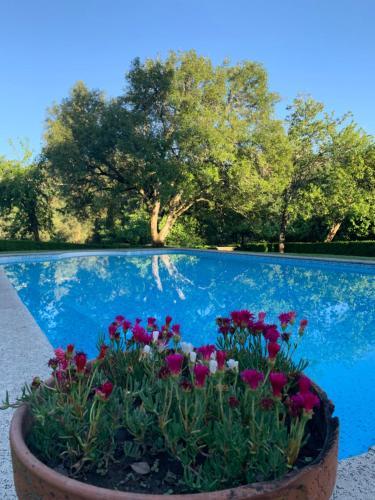 Villa Margaridi