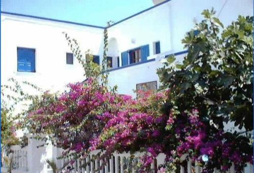 Villa Gambas