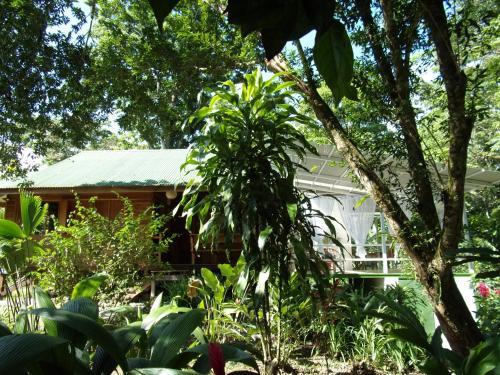 Casa Luminosa Caribbean Lodge