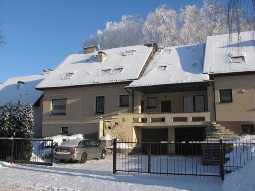 House in a Birch Grove