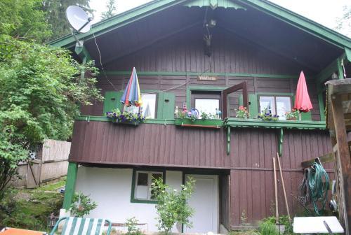Ferienhütte Waldheim