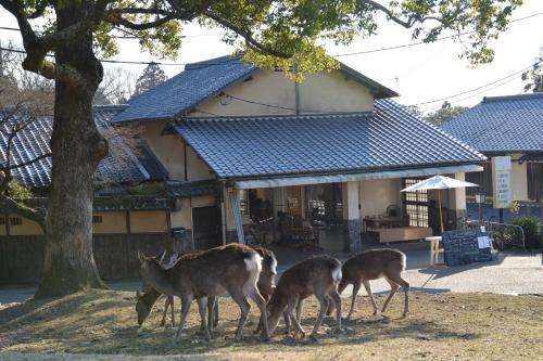 The Deer Park Inn