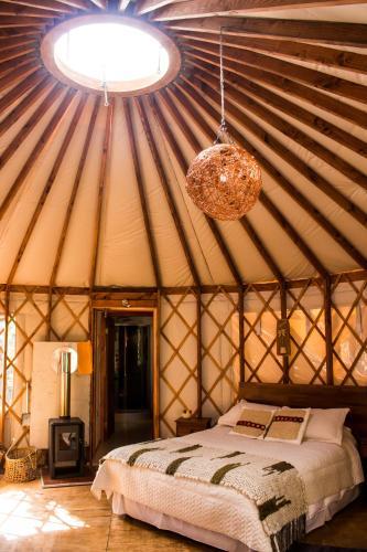 Paihuen Yurts & turismo