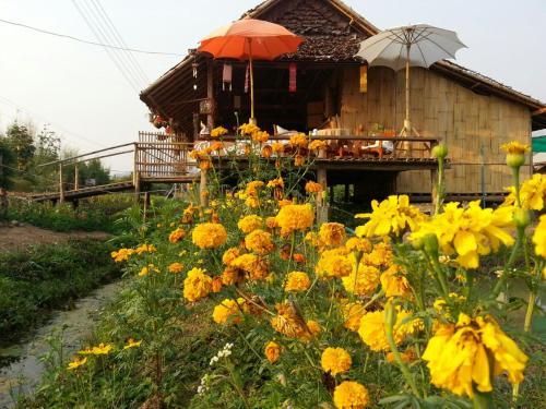 Tulip Resort Pai