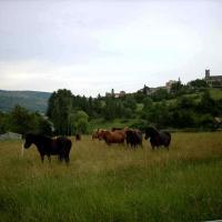 Gite Provence Luberon Paca
