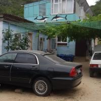 Гостевой дом Два Дельфина