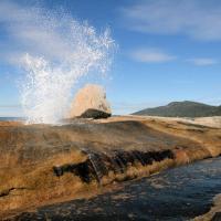 Suntrap Cove Bicheno