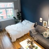 Cactus Photographer Art Apartment