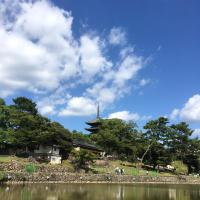 Guest House Route53 Furuichi