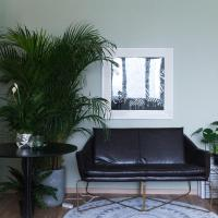 Cactus Elegant Art Apartment