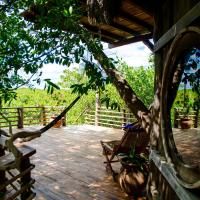 The mangrove treehouse