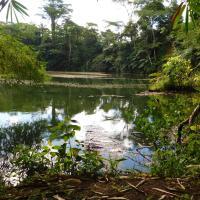 Colo-I-Suva Rainforest Eco Resort