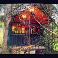 Casa En El Arbol