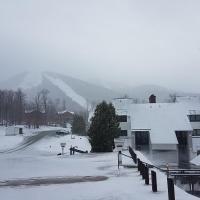 Luxury Trailside Condo - Ski In/Out