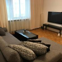 Big Vienna Apartment near Main Station