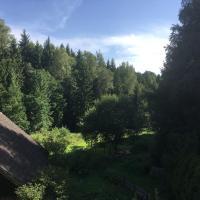 Grünlasmühle